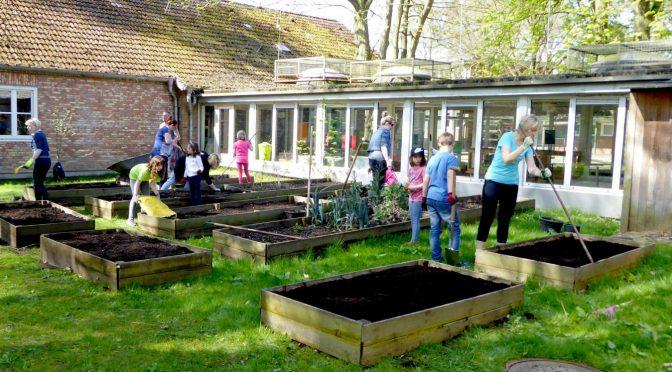 Rege Beteiligung beim Gartentag 2018